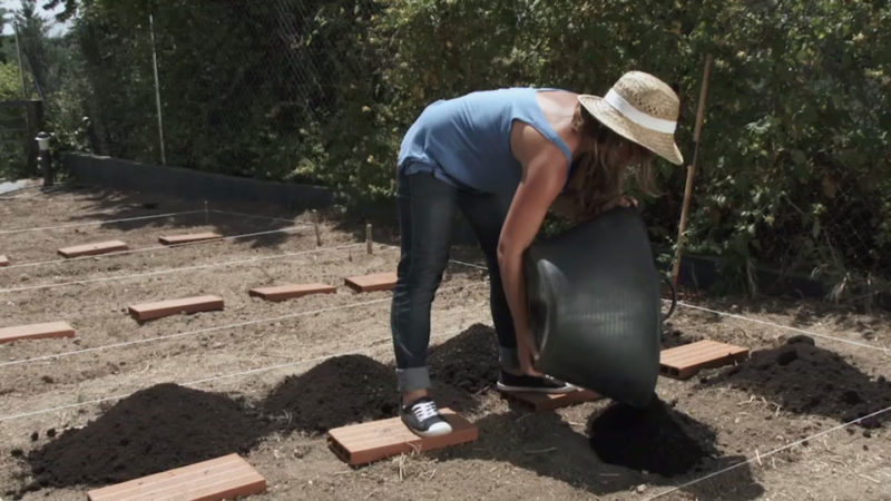 huerto urbano _ distribuir compost