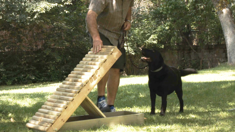 construir agility _ rampa