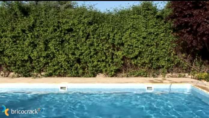 desinfectar piscina -piscina limpia