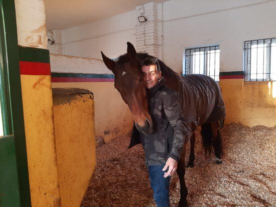 Leo bricocrack _ caballo